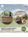 Prova de Vinhos + Passeio de Buggy 4X4